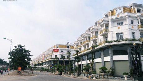 Ra mắt dự án Shophouse Geleximco Lê Trọng Tấn